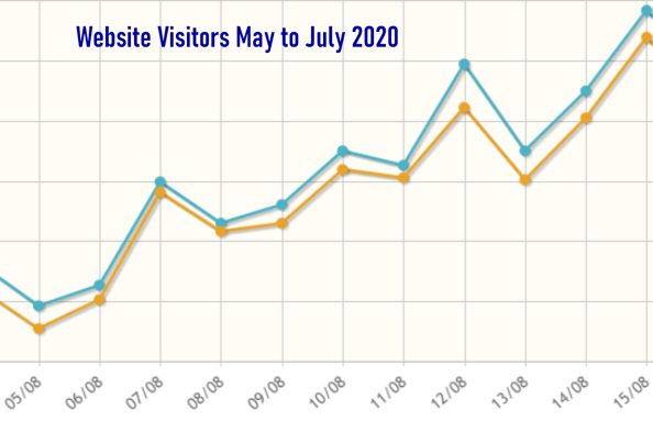 Website_Visitors_Aug2020